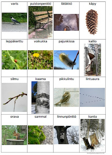 Keväisiä kuvia bingoalustassa